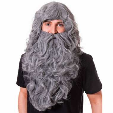 Goedkope grote grijze pruik baard lang