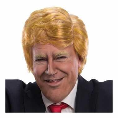 Goedkope verkleed pruik president amerika